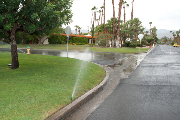 Sprinklers after rain