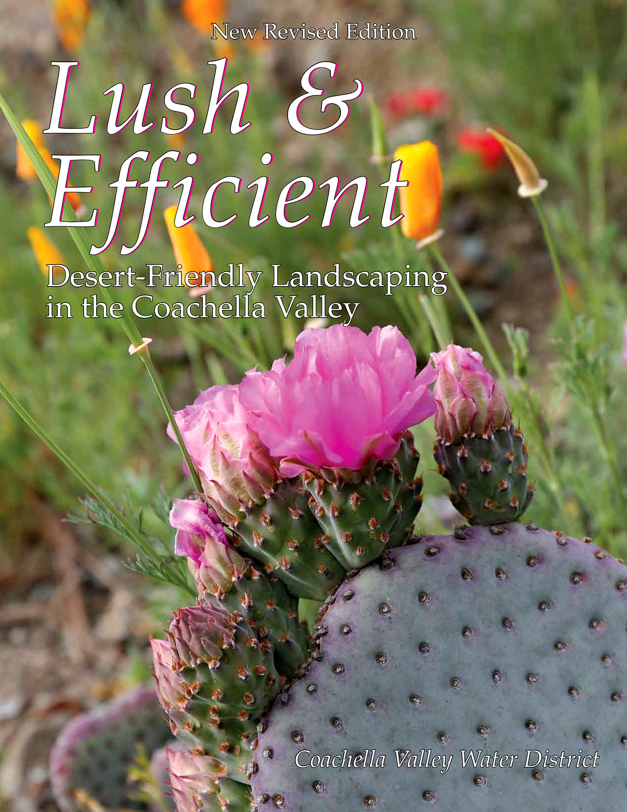 Lush and Efficient Desert Gardening Book Cover